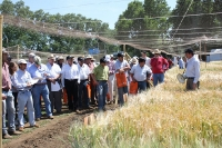 Dia de Campo Maltexco 2012