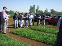 Visita técnica a ensayos Maltexco y planta CCU Temuco